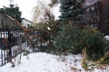 Zniszczenia na placu kościelnym